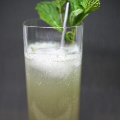 NYE Cocktail Tasting Menu: Gin-Gin-Gin Mule