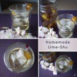 Homemade Ume Shu (Plum Liqueur)